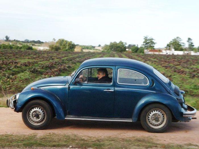 1987_volkswagon_beetle