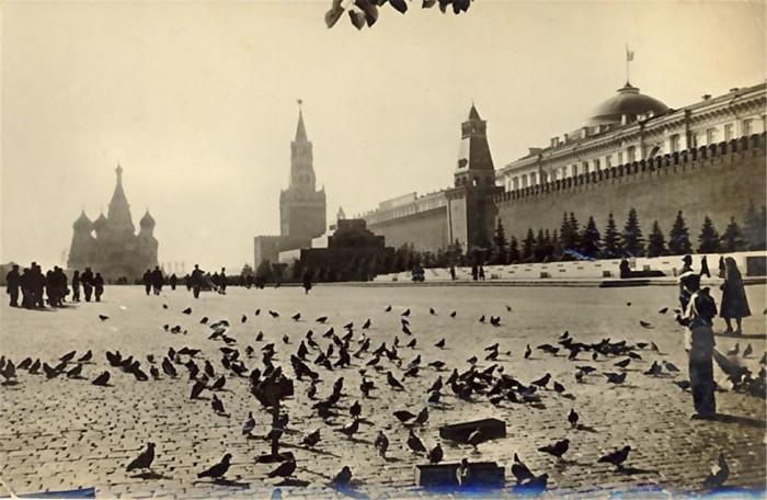 1. a. kremlj1
