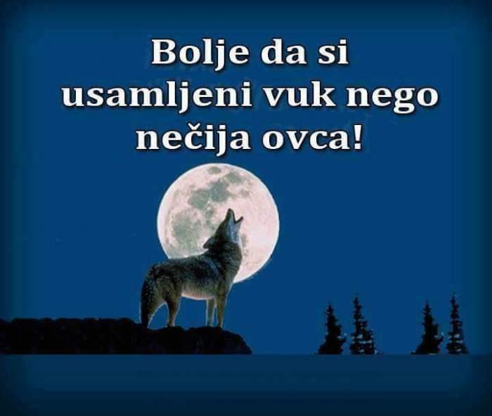 Bolje usamljeni vuk nego ovca